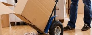 moving trolley and box